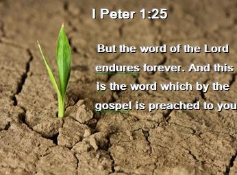 Bible Verse 1 Peter 1:25