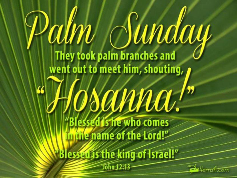 Palm Sunday - John 12:13